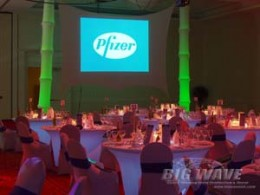 The Annual Award Ceremony and Gala for Pfizer